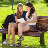 Students going over homework. Royalty Free Stock Image