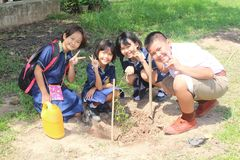 Students are growing the tree. stock photos