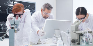 Students laboratory analysis Royalty Free Stock Images