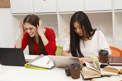 Students ladies studying royalty free stock photography