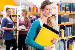 Students learning in library Stock Photos