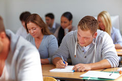 Students learning in university Royalty Free Stock Photography