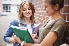 Students before lesson Stock Images