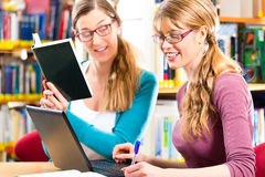 Students in library are a learning group Royalty Free Stock Photos