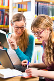 Students in library are a learning group. Students - Young women in library with laptop and book learning in group Stock Photo