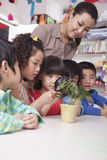 Students Looking at Plant with a Magnifying Glass Royalty Free Stock Photos