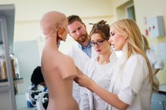 Students of medicine examining anatomical model. In classroom Stock Images