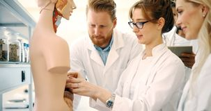 Students of medicine examining anatomical model in classroom Royalty Free Stock Photos