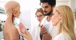 Students of medicine examining anatomical model in classroom Stock Photography