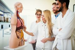 Students of medicine examining anatomical model in classroom Stock Image