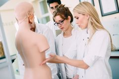 Students of medicine examining anatomical model in classroom Royalty Free Stock Image