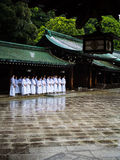 Meiji Shrine @ Tokyo, Japan. Students touring through the ancient Meiji shrine while learning the history of the Shrine. Taken on the 08/09/2015 Stock Photography