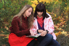 Students on nature. Royalty Free Stock Photo