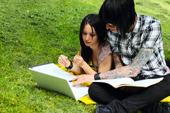 Students outdoor. Couple of students studying outdoor with laptop Stock Photos