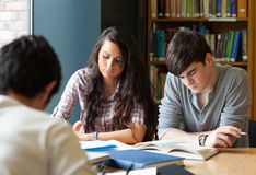 Students preparing the examinations Stock Photos