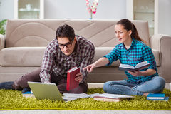 The students preparing for university exams Royalty Free Stock Images