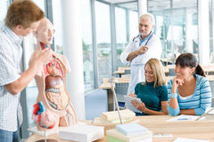 Students with professor and human anatomical model. University - medical students with professor and human anatomical model in classroom stock photo