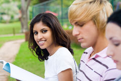 Students reading Stock Images