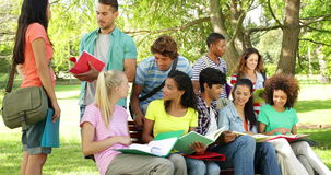 Students reading and chatting together outside on campus stock footage