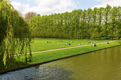 Students relaxing in park Royalty Free Stock Images