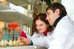 Students - researchers Royalty Free Stock Photos