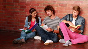 Students sitting against wall reading textbooks Royalty Free Stock Photos