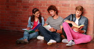 Students sitting against wall reading textbooks Royalty Free Stock Photo