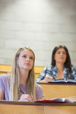 Students sitting beside each other while learning Royalty Free Stock Photography