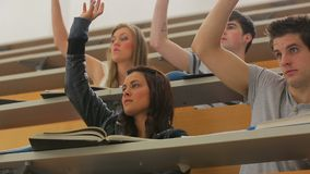 Students sitting at the lecture hall Stock Photos
