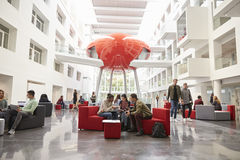 Students socialising in the lobby of modern university Royalty Free Stock Photo