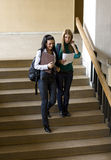 Students on stair. Students climbing down stairs and chatting Royalty Free Stock Image