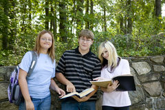 Students Studying. Three students look over their notes from class stock images
