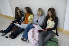 Students studying. A study group of attractive female college students studying on their laptop computers and reading their notes stock photos