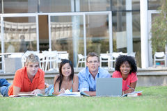 Students studying Stock Photography