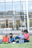 Students studying. Portrait of students studying outside Stock Images
