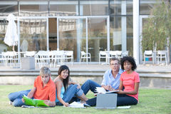 Students studying. Portrait of students studying outside Stock Photos