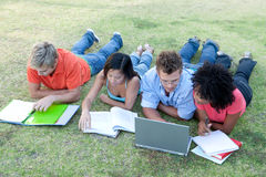 Students studying. Portrait of students studying outside Royalty Free Stock Image