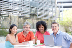 Students studying. Portrait of group of students studying outside Stock Image