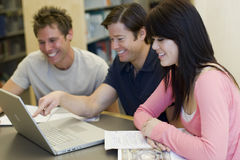 Students studying Royalty Free Stock Photos