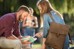Students studying on bench in park Stock Photos