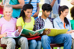 Students studying on bench Royalty Free Stock Image