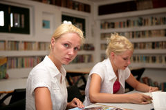 Students studying in library Royalty Free Stock Image