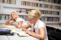 Students studying in library Royalty Free Stock Photos