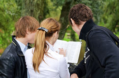 Students studying outdoors Royalty Free Stock Photo