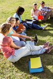 Students studying outside on campus. On a sunny day Royalty Free Stock Images