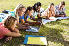 Students studying outside on campus. On a sunny day Royalty Free Stock Photos