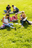Students studying sitting in the park teens Royalty Free Stock Photography