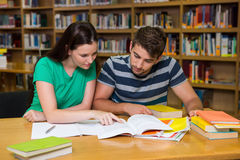 Students studying together in the library Stock Photography