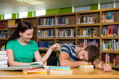 Students studying together in the library Royalty Free Stock Images