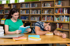 Students studying together in the library Royalty Free Stock Photos